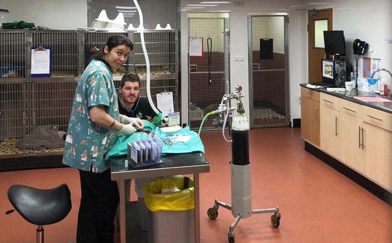 Alston Surgery